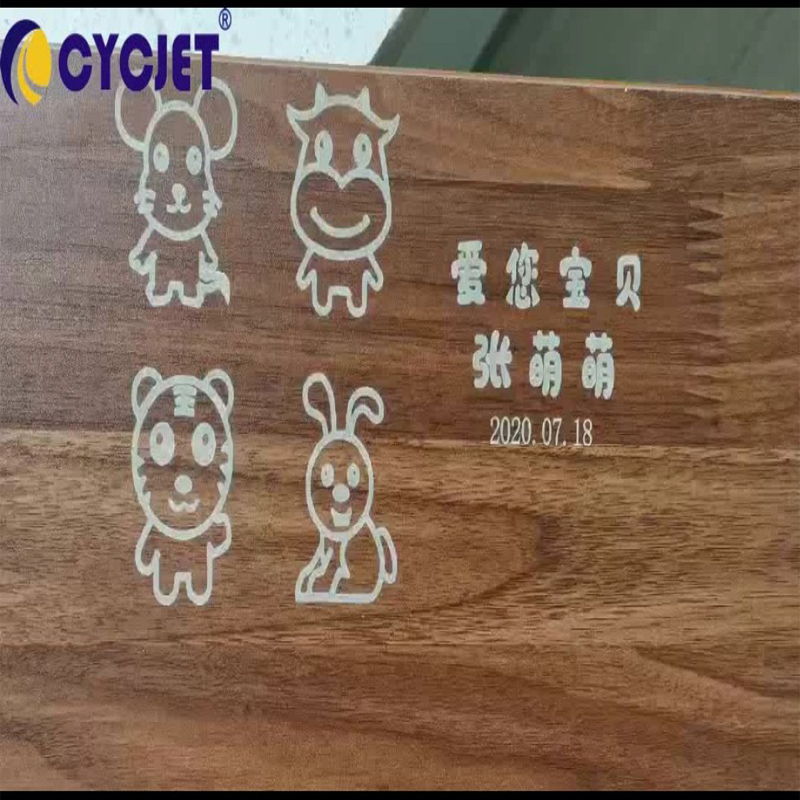 CYCJET CO2 LASER CODING MACHINE ENGRAVING CARTOON IMAGES ON WOOD PLATE